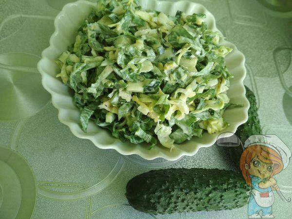 зеленый салат с капустой и щавелем