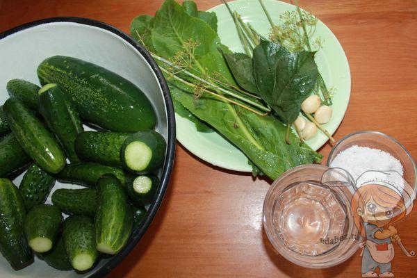 ингредиенты для квашения огурцов