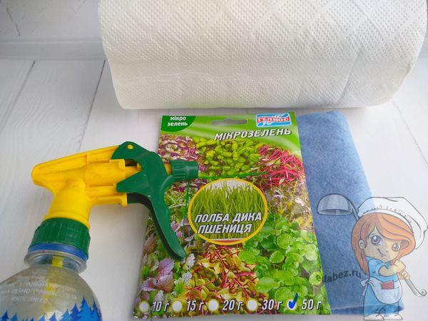 Необходимые инструменты и семена