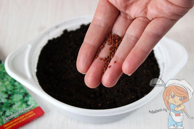 Сеим семена