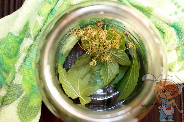 Кладем листья в стерилизованные банки