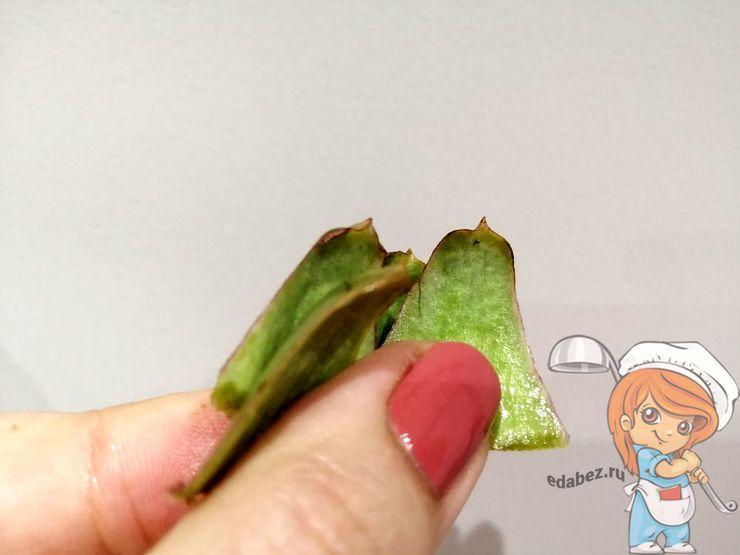 Острые шипы на листьях артишока