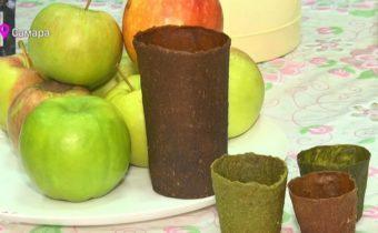Съедобная посуда из яблок